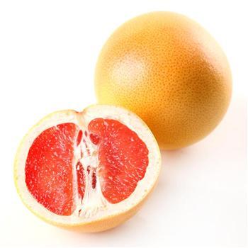 西柚水果矢量图